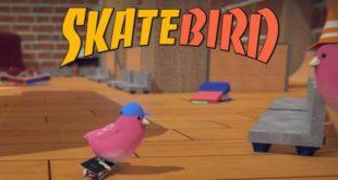 Glass Bottom Games confirms SkateBIRD for Nintendo Switch