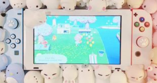 A fan decorates her Switch to prepare for Animal Crossing: New Horizons