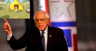 Bernie Sanders wants Nintendo to release Animal Crossing: New Horizons early