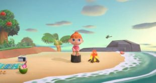 Mother and daughter fight over Animal Crossing: New Horizons island