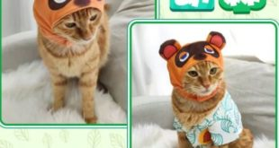 A Chinese company sells hats and shirts for cats inspired by Tom Nook