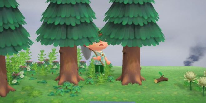 How to catch spiders in Animal Crossing: New Horizons and earn more money with them