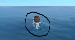 Here's how to swim, buy wetsuit in Animal Crossing: New Horizons