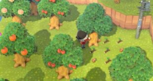 Here's the easiest way to get acorns in Animal Crossing New Horizons