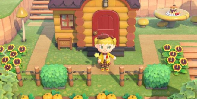 A very special Animal Crossing: New Horizons item - how to get it
