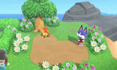 An object has been blocked in the new Animal Crossing update