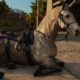 Far Cry 6 lets you ride a unicorn and a zebra - this is how you find the mounts